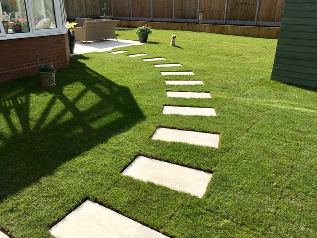 turfing and grass seed
