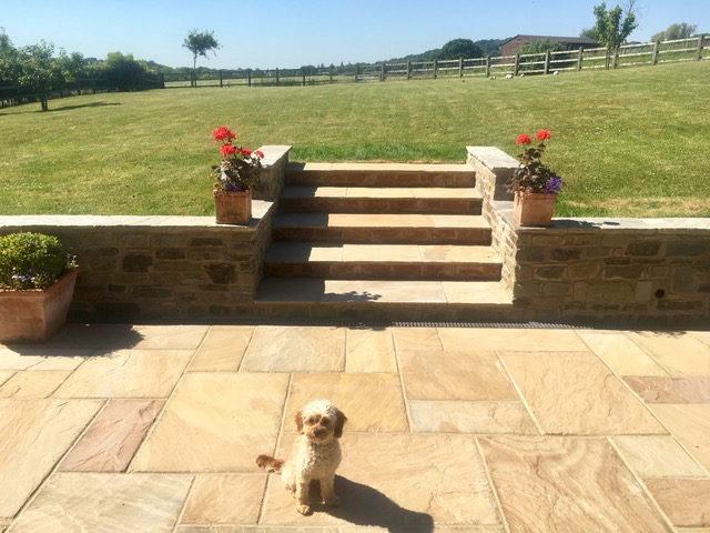 steps leading up from the patio to a beautiful lawned area. Dog in shot saying hello.